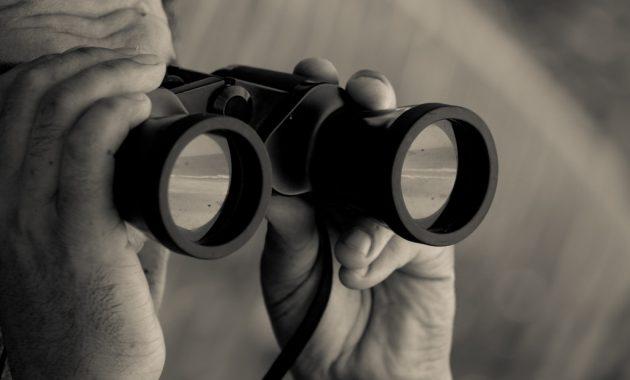 11 Pengertian Observasi Menurut Para Ahli