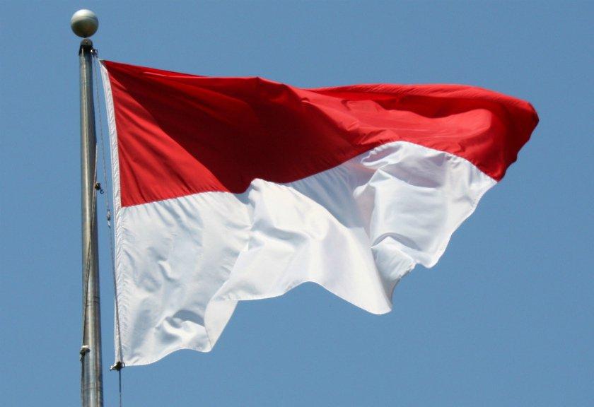 Tujuan Negara Secara Umum dan Menurut Para Ahli | Tujuan Negara Indonesia