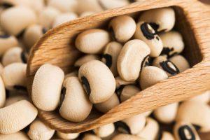 8 Kandungan Gizi Kacang Tunggak Beserta Manfaatnya