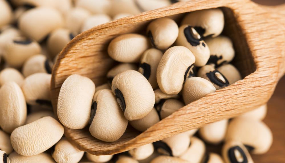 8 Manfaat Kacang Tunggak Beserta Kandungan Gizi nya