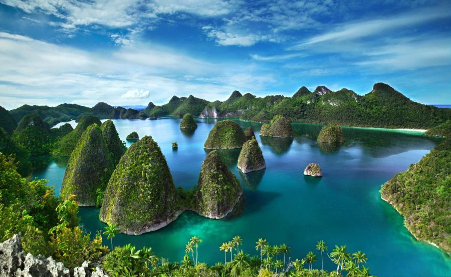 Profil Provinsi Papua Barat | Sejarah, Penduduk dan Tempat Wisatanya