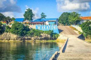 Profil Provinsi Sulawesi Tenggara | Sumber Daya dan Keunikannya