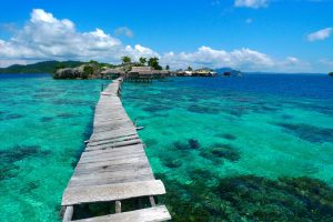 Profil Provinsi Sulawesi Tengah | Sejarah, Geografis, Adat Istiadat dan Keseniannya