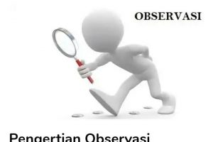 Pengertian Observasi