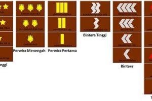 Mengenal 22 Tingkatan Urutan Pangkat Polisi di Indonesia