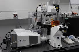Mengenal Bagian-Bagian Mikroskop dan Jenis-Jenisnya