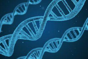Wajib Dipahami | Perbedaan DNA dan RNA yang Sudah Mulai Terlupakan