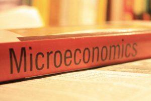 Ruang Lingkup Ekonomi Mikro dan Cabang Ilmu yang Terkait di Dalamnya