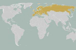 Letak Geografis Benua Eropa dan Pengaruhnya pada Perbedaan Karakter